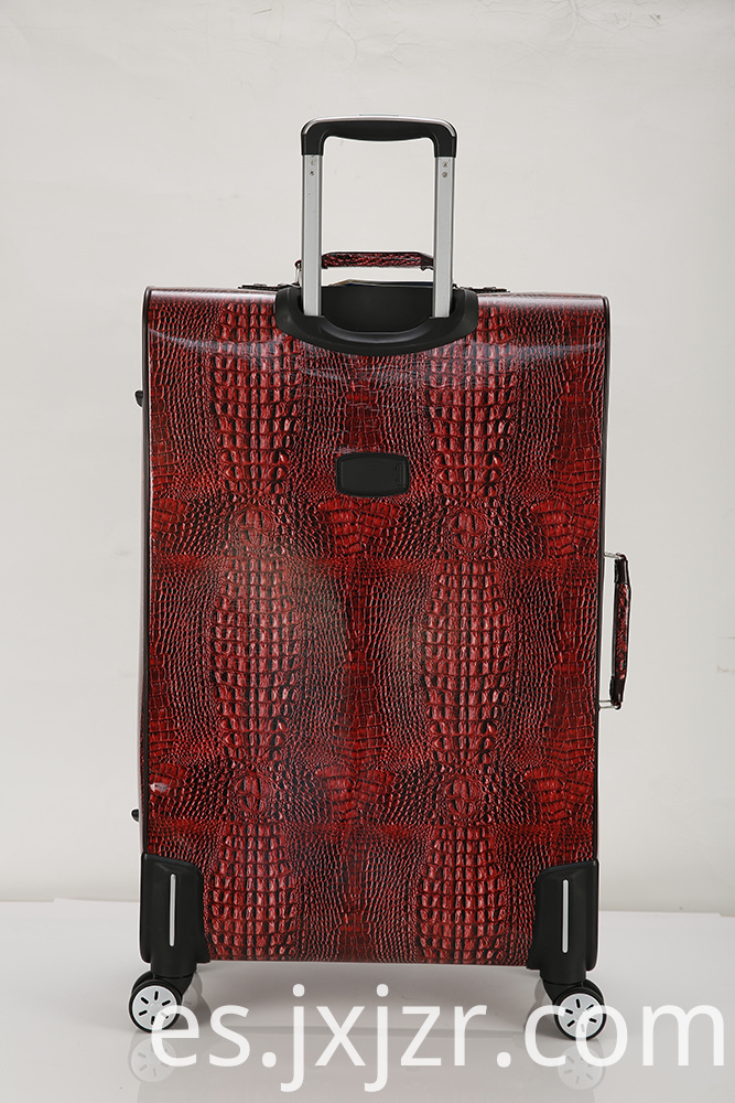 Expandable Checked Spinner Luggage