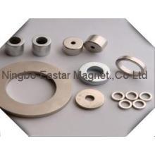 N45 Seltenerd-Neodym-Ringmagnet mit Verzinkung