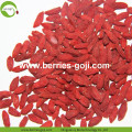 Fuente de la fábrica Fruit Natural Top Quality Goji Berries