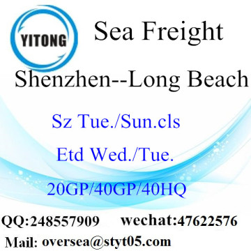 Shenzhen Port Seefracht Versand nach Long Beach