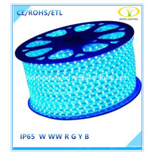 Blue 5050SMD LED Strip Light for Christmas Decoration