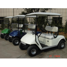 Buggy da golf a 2 posti con batteria al litio