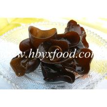2.5-3cm Organic Natural Black Fungus Cloud Wood Eea