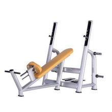 Ce Approved Gym utilizó Commercial Incline Bench (lujo)