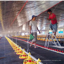 Automatic poultry farming system for chickens,poultry feeding system design for chicken farm