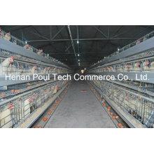 Heißer Verkauf Galvanisierung Züchter Huhn Käfig (ein Typ)