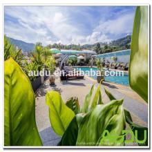 Audu Tailandia Sunny Hotel Project Playa Piscina Silla