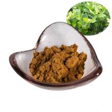 suministro de fábrica polvo de extracto de té mate 10: 1 / polvo de té mate