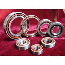 Rodamiento de cerámica de alta calidad de alta calidad del contacto angular 65bnr10