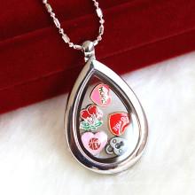 Персонализируйте ожерелье ювелирных изделий ожерелья ожерелья