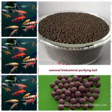 algae bio purify ball made by seaweed extract