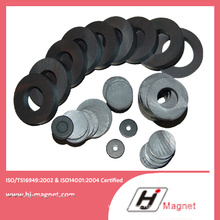 Hot Sale Manufactured by Factory with Strong Industrial Ring Ferrite Magnet