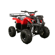 Single Cylinder Mini ATV with EPA Certificate (MDL GA003-2)