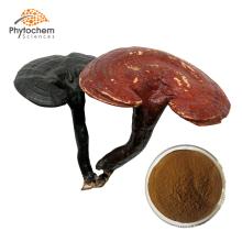 Solvent Extraction Reishi Mushroom Extract Powder Ganoderma Lucidum Lingzhi