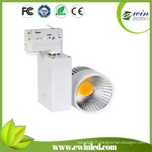 Lumière de voie de l'ÉPI LED de 10W / 20W / 30W / 50W avec du CE RoHS