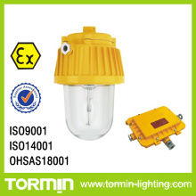 Modern Light Fixtures Explsoion Proof Floodlight for Gas Oil Station