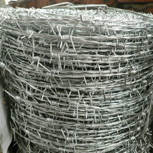 Hot-Dipped /Electric Galvanized Barbed Wire