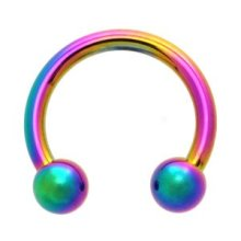 Rainbow Anodized Titanium Horseshoe Stainless Steel CBR
