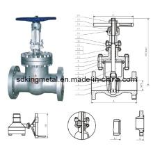Válvula de aço de aço fundido API 600lb