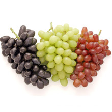 2021 Hot Selling Lowest price China Fresh Fruit Vitamin Rich Red Globe Grape