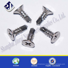 Made in China Factory Price Countersunk Screw