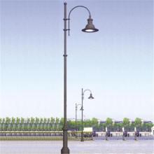 Lumière solaire de parc de la batterie LED solaire de gel de contrôleur de 30W CREE LED IP65 MPPT