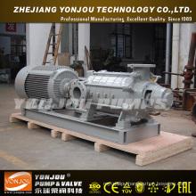Horizontal Multistage Pump (D)