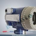 Vortex & Swirl Flowmeters