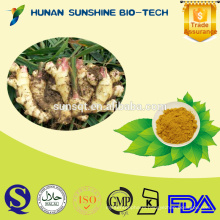 Alibaba manufacturer for dispelling alcohol extract Ginger extract 5% Gingerol