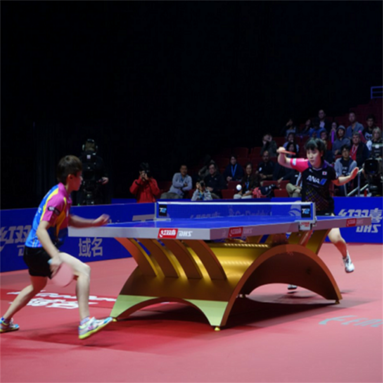 Table Tennis Sports Court 4