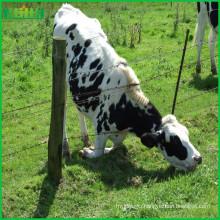 Factory price high quality grassland fence