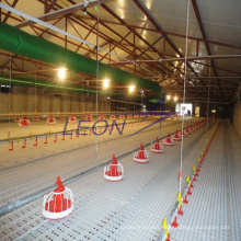 Automatic poultry equipment/chicken house equipment/ poultry feed equipment