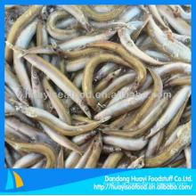 Lança de areia congelada bom fornecedor perfeito exportador alimentos frescos