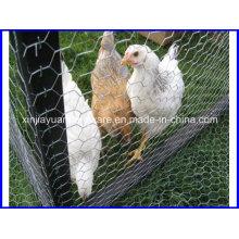 Hexagonal Wire Netting/Live Stock Wire Netting