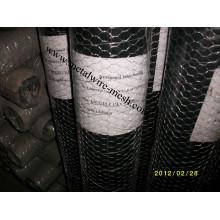 Maille métallique hexagonale en acier inoxydable pour la protection