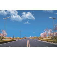 Открытый IP67 солнечный светодиодный уличный фонарь