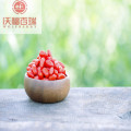 Wolfberry / Lycium Barbarum / Healthy Goji Berry