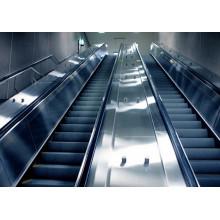 Dsk Public Transport Heavy Duty Escalators