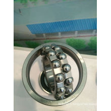 Fkd Bearing (Self-aligning Ball Bearing)