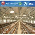 Silver Star Automatische Hühnerfarm Geflügelkäfige