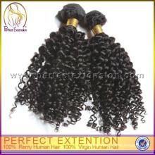 Christmas Gifts 2015 Brazilian Braiding Hair Kinky Curly Hair