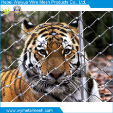 Fil de corde de fil d'acier inoxydable pour l'animal