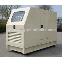 Propano del generador de turbina de gas 8kw-1100kw para la venta