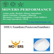 Stereo DHEA Enanthate (Prasterone Enanthate)