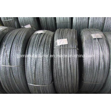 Export de haute qualité Hot DIP Galvanized Steel Strand