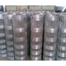Rieles ovales de metal de cabra Ovejas panel de esgrima para Stockyard / Farming