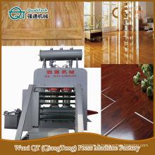 Panneau de porte de placage multi-couches de qualité Hot Press