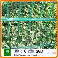 clôture de jardin à double fil