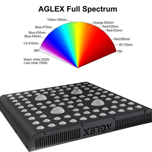 2000w LED COB Grow Light Full Spectrum