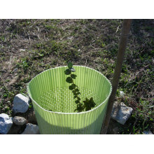 Plant Shelter